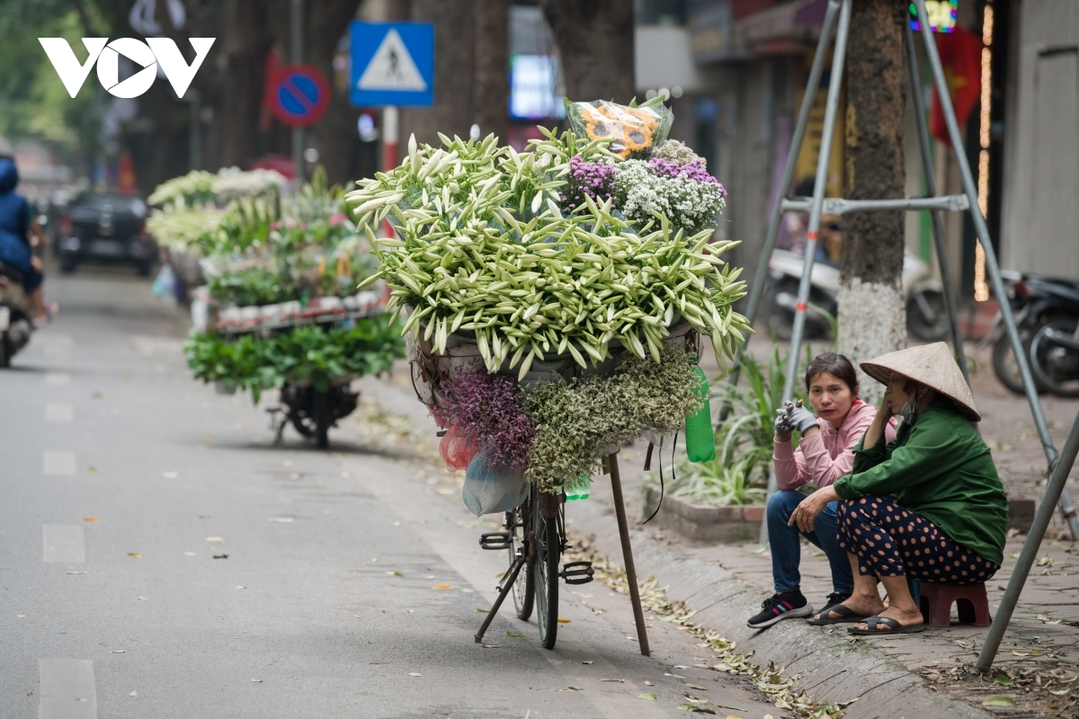 These days the people of Hanoi can easily spot lilies on streets such as Thuy Khe, Phan Dinh Phung, Lang Ha, and Thanh Nien.