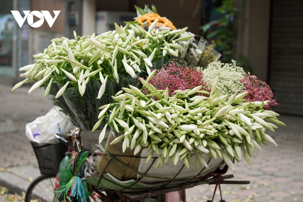 Lilies usually stand out among other colourful flowers that are for sale on the street due to their simplicity and beauty.