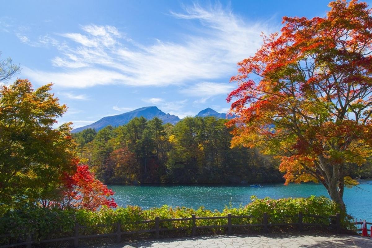 Quần thể hồ Goshikinuma hay còn gọi là hồ Ngũ sắc là một trong những danh lam thắng cảnh hùng vĩ nhất tại Fukushima. Mỗi hồ lại có sắc nước riêng, từ nâu sẫm đến xanh cô-ban. Vào mỗi mùa, khung cảnh của hồ lại có những nét đặc sắc vô cùng riêng biệt, tạo cảm hứng cho rất nhiều các nhiếp ảnh gia tại Nhật Bản và trên thế giới.