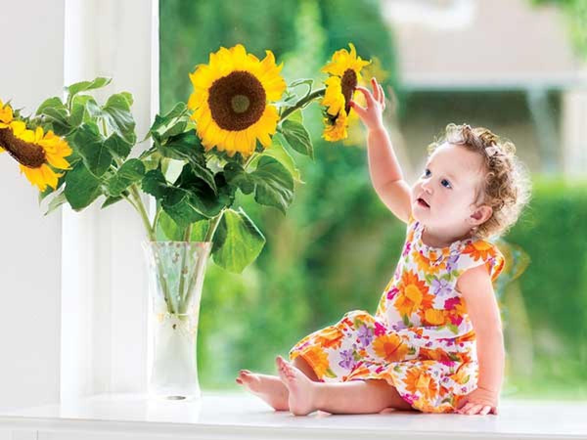 Lợi ích số 8: Một số nghiên cứu chỉ ra rằng đặt hoa và cây xanh trong nhà giúp tăng cường sự tập trung của bạn, vì thực vật cung cấp thêm oxy cho không gian trong nhà, nhờ đó giúp các tế bào não hoạt động tích cực hơn.