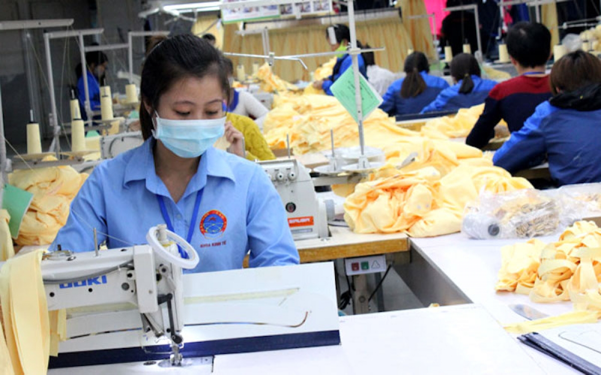 Workers at Truong Phuc Textile company. Photo: Khac Kien