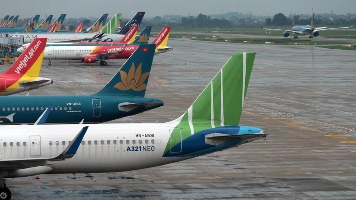 """Có hiện tượng """"sốt"""" vé máy bay đến các điểm du lịch trong nước."""