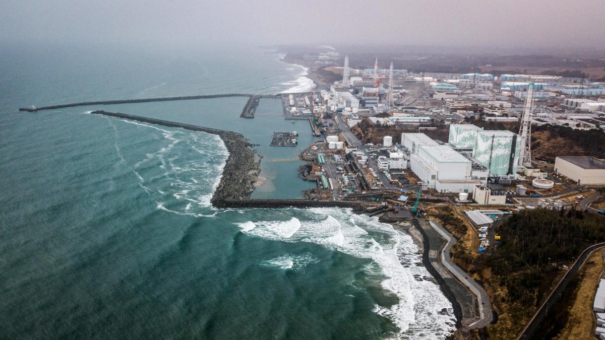 Nhật Bản xem xét xả nước nhiễm xạ từ nhà máy điện hạt nhân Fukushima ra biển. Ảnh: Hakai