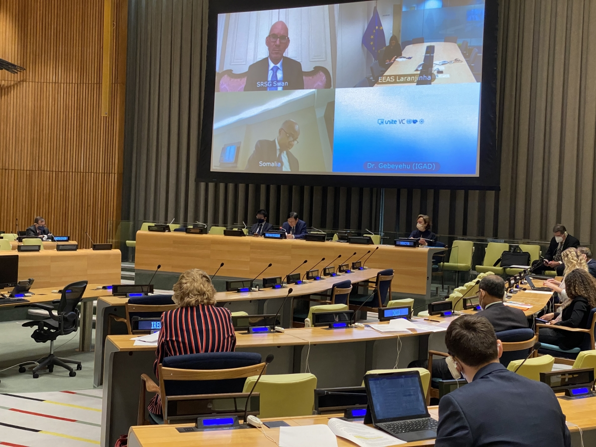 Đại sứ Đặng Đình Quý chủ trì phiên họp của HĐBA LHQ về tình hình Somali.
