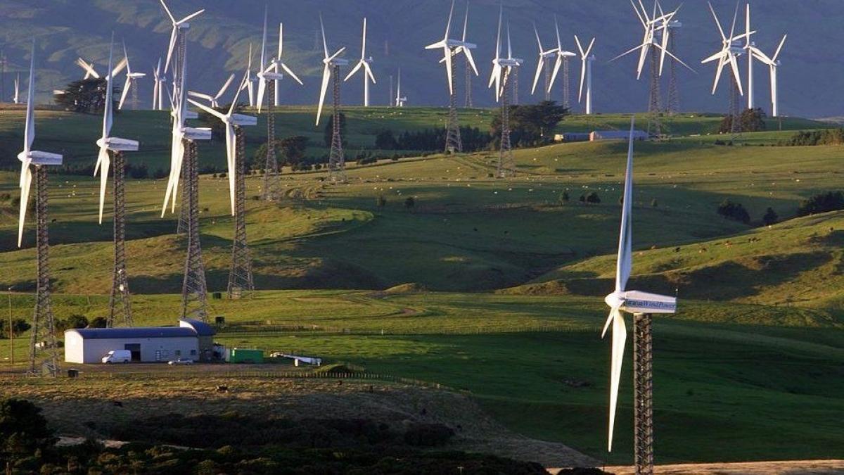 Từ lâu New Zealand đã luôn chú trọng bảo vệ môi trường khi sử dụng các nguồn năng lượng sạch, trong đó có điện gió. (Ảnh: BBC)