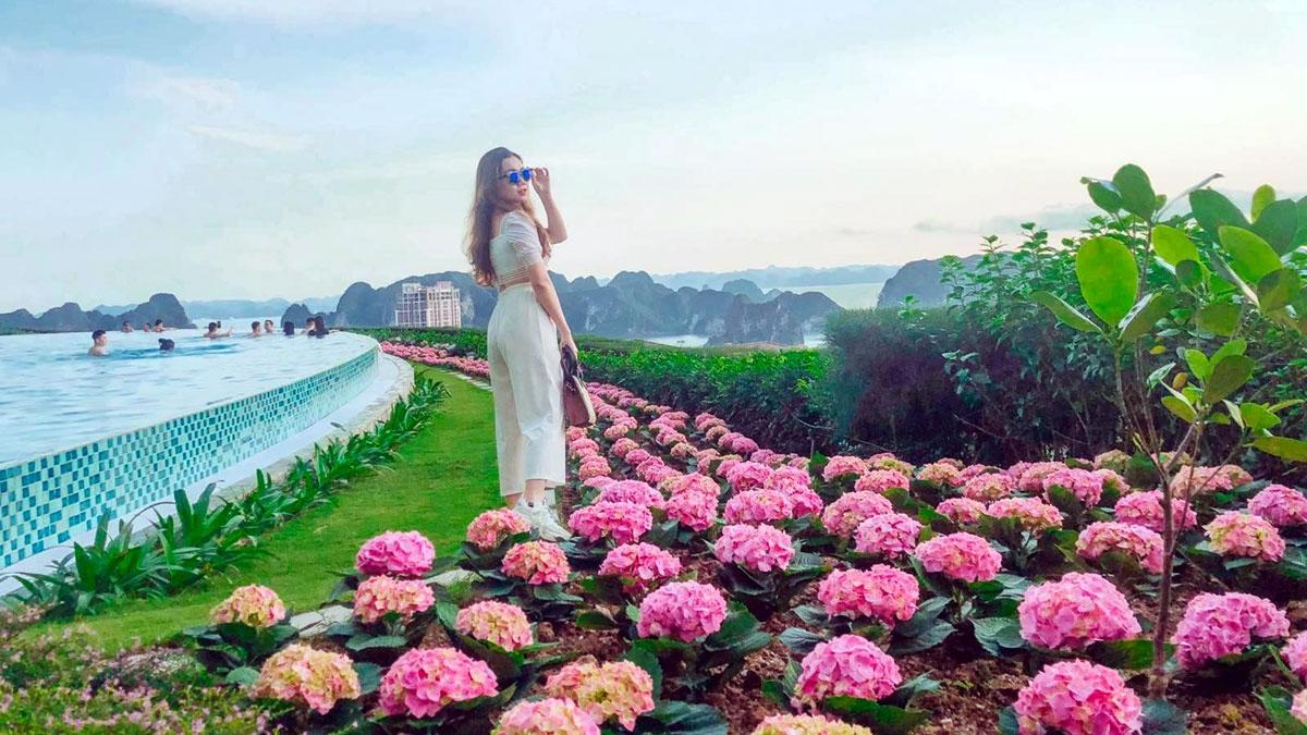 Dạo bước giữa những con đường ngàn sắc hoa và thưởng thức không gian kỳ vĩ của vịnh Hạ Long từ độ cao 100m là những trải nghiệm đầy cảm xúc dành cho du khách khi đến với quần thể FLC Hạ Long (Quảng Ninh) dịp 30/4 cũng như trong mùa Hè này.