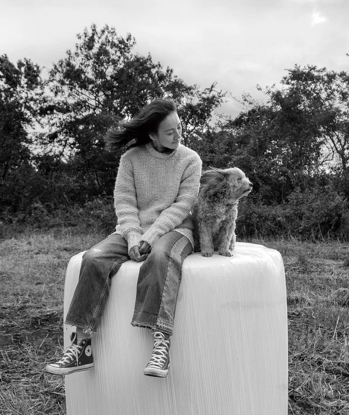 Lee Hyori được biết đến là một nghệ sĩ rất yêu động vật, đặc biệt là loài chó.