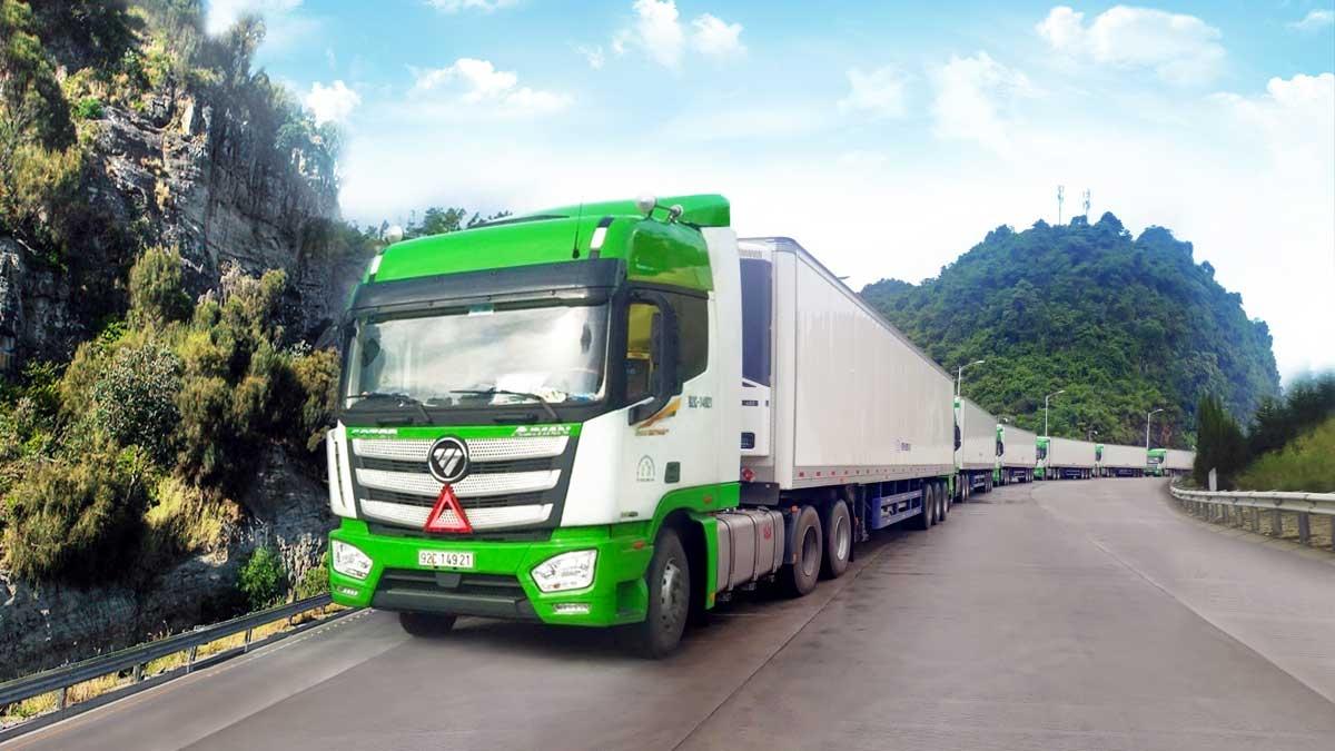 Đội Xe lạnh chuyên dụng vận chuyển hàng nông sản do THILOGI đầu tư.