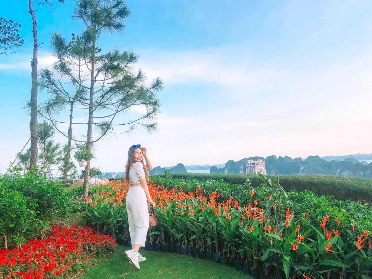 Từ đảo Thiên điểu, du khách có thể thu trọn khung cảnh kỳ vĩ và thơ mộng của vịnh Hạ Long trong tầm mắt, với những đảo đá vôi thấp thoáng phía xa trên nền sóng biển mênh mang.