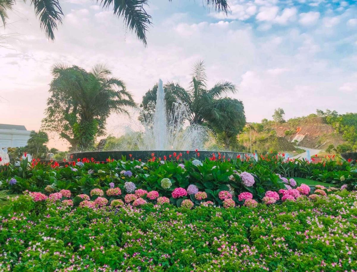 Bên bể bơi vô cực và đài phun nước của khách sạn FLC Grand Hotel Halong, vườn hoa cẩm tú cầu đủ màu sắc hồng, tím bung nở rực rỡ tạo nên khung cảnh lung linh, thơ mộng thu hút các du khách trẻ check-in.