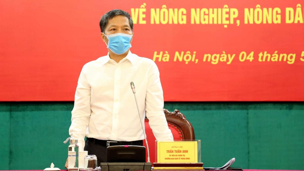 Uỷ viên Bộ Chính trị,Trưởng Ban Kinh tế Trung ươngTrần Tuấn Anh, Trưởng Ban Chỉ đạo phát biểu tại Hội nghị.
