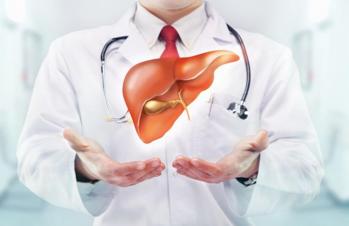 Cải thiện sức khỏe gan: Quá tải sắt trong cơ thể có thể gây tổn thương gan nghiêm trọng. Những nghiên cứu gần đây đã chỉ ra mối liên hệ giữa sự dư thừa sắt với các bệnh lý như viêm gan C, gan nhiễm mỡ không do rượu bia, và nhiều bệnh về gan khác. Hiến máu là một trong những cách giúp giảm lượng sắt thừa trong cơ thể.