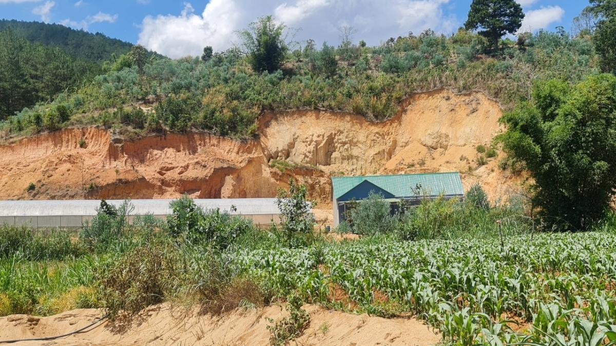 Nhiều khu vực đồi núi ở Bãi Sậy bị đào xới nham nhở để lấy đất, san ủi mặt bằng.