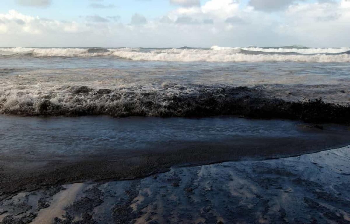 Sự cố tràn dầu Prestige năm2002. Vụ chìm tàu chở dầu MV Prestige vào tháng 11/2002 ở ngoài khơi bờ biển Galicia của Tây Ban Nha đã dẫn đến việc ô nhiễm những dải bờ biển rộng lớn và hơn 1.000 bãi biển trên bờ biển Tây Ban Nha, Pháp và Bồ Đào Nha. Vụ tràn dầu được coi làthảm họa sinh thái tồi tệ nhất của Tây Ban Nha khi một số lượng lớn các loài chim và sinh vật biển đã chết hoặc bị nhiễm độc./.