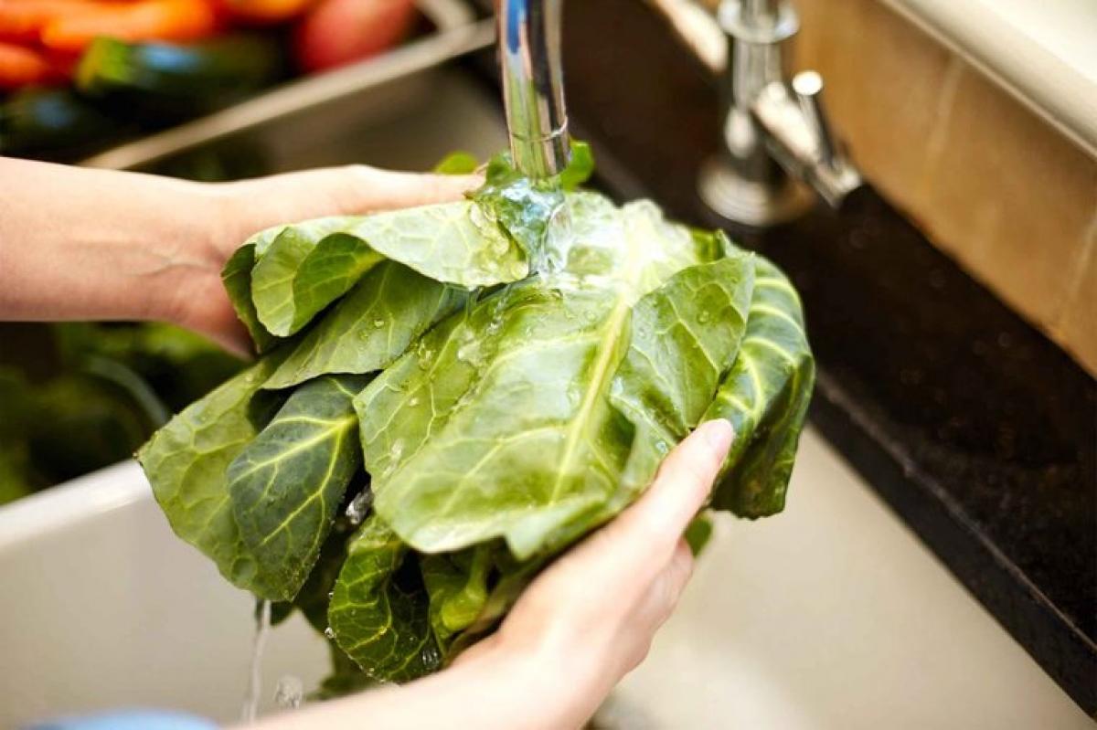 Rửa rau thật kỹ: Các loại rau xanh được coi là những thực phẩm có khả năng gây ngộ độc cao nhất vào mùa hè. Lý do là những lá rau bị rách hoặc thái nhỏ dễ nhiễm vi khuẩn hơn, và một lượng lớn các lá rau bó chung lại với nhau sẽ tạo điều kiện cho vi khuẩn lan truyền chéo. Do đó, bạn cần rửa rau thật kỹ trước khi chế biến.