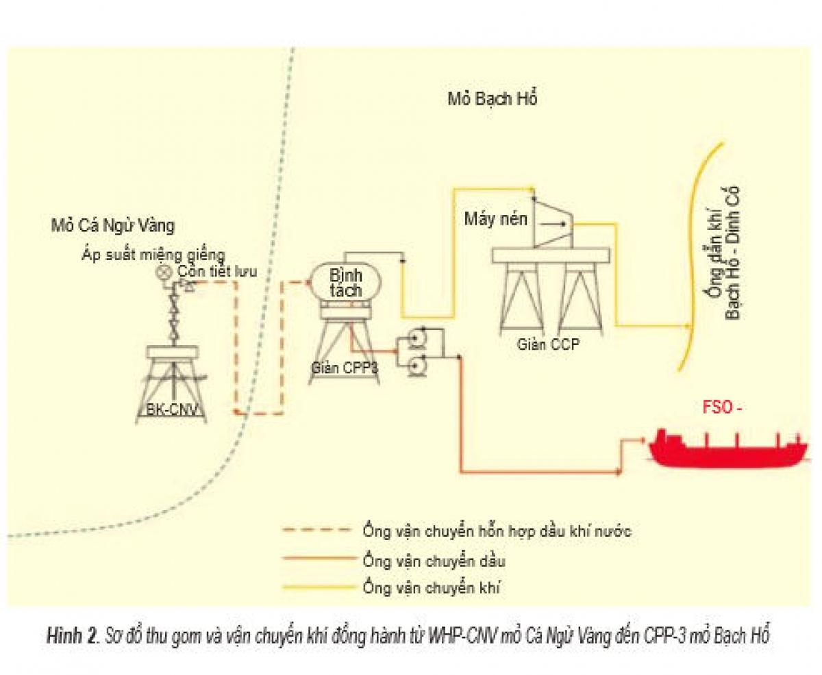 Sơ đồ thu gom và vận chuyển khí đồng hành từ WHP-CNV mỏ Cá Ngừ Vàng đến CPP-3 mỏ Bạch Hổ