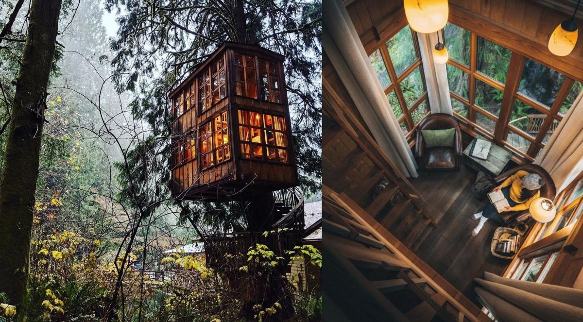 Điểm dừng chân thú vị này nằm trong một khu rừng rợp bóng cây, cách thành phố Seattle (Mỹ) chừng 30 phút. Với vị trí riêng tư và không gian ấm cúng bên trong, đây là điểm hẹn hò vô cùng lãng mạn. Rất nhiều cặp đôi đã chọn nơi này để chụp ảnh cưới, hoặc đơn giản là check-in và nghỉ ngơi dịp cuối tuần.