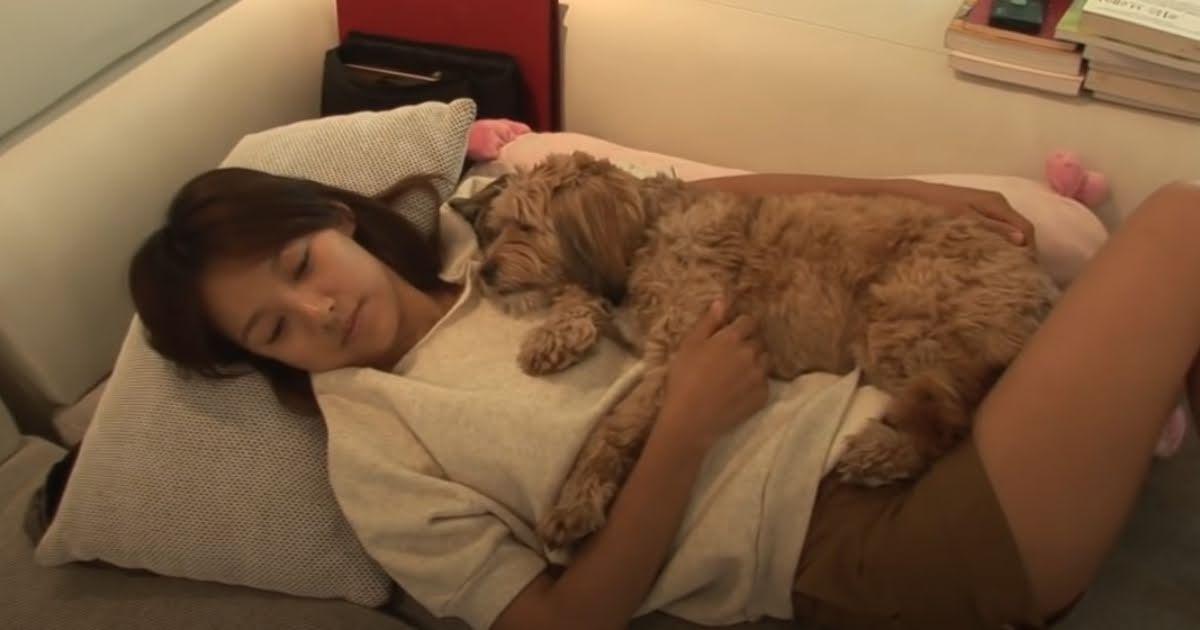 Lee Hyori và chú chó Soonshim. Nguồn: Koreaboo