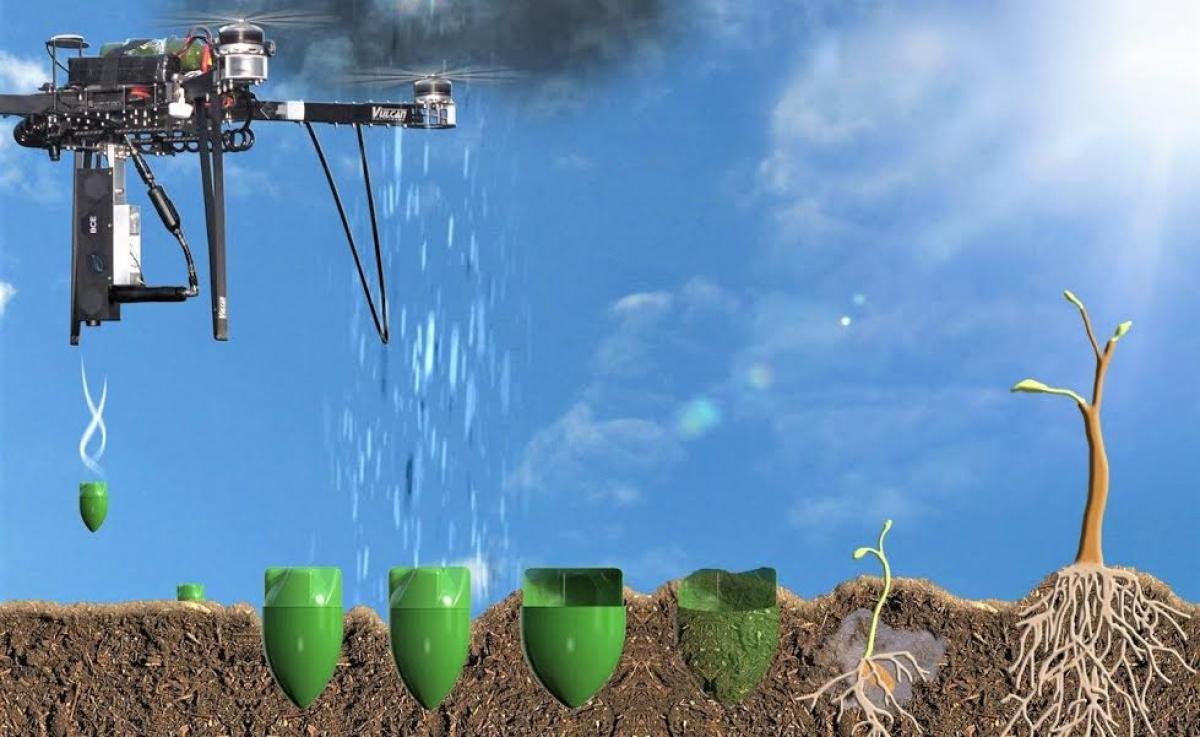 Việc sử dụng drone trồng rừng sẽ tạo ra cuộc cách mạng trong lâm nghiệp. (Ảnh: interestingengineering.com)