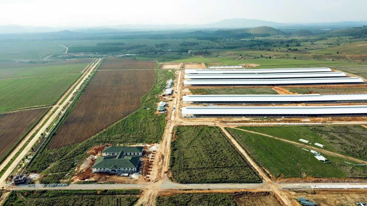 Tổ hợp trang trại tại Lào của Vinamilk đã hoàn thiện các hạng mục xây dựng cơ bản của cụm trang trại đầu tiên, dự kiến đi vào hoạt động vào đầu năm 2022.