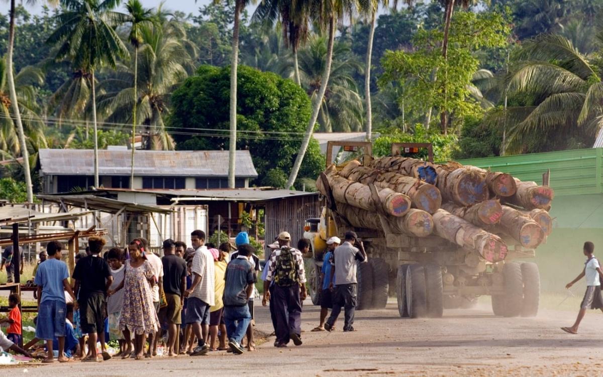 Xe tải chở gỗ xuất khẩu đi qua ngôi làng Vanimo ở Papua New Guinea. Ảnh: The Guardian