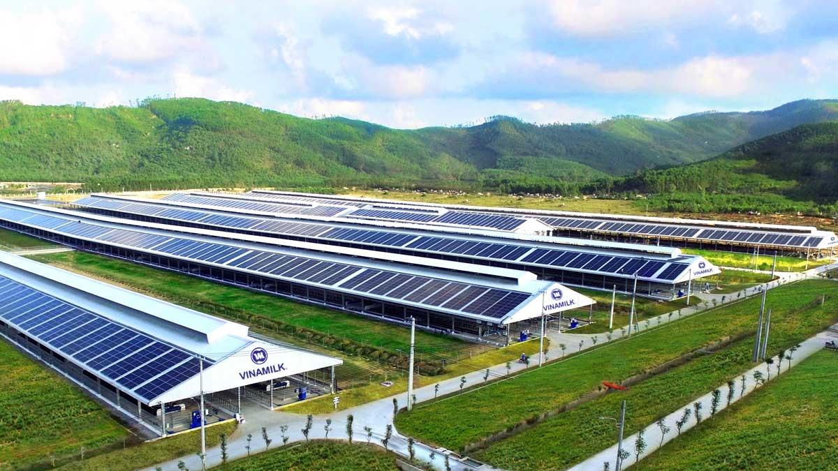 Hệ thống năng lượng mặt trời là dấu chân xanh nổi bật trong việc sử dụng năng lượng tái tạo vào hoạt động sản xuất kinh doanh của Vinamilk.