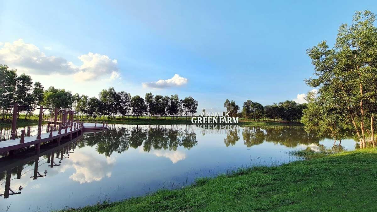 Đầu năm 2021, Vinamilk giới thiệu hệ thống trang trại sinh thái Vinamilk Green Farm được đầu tư xây dựng tại Tây Ninh, Quảng Ngãi và Thanh Hóa.
