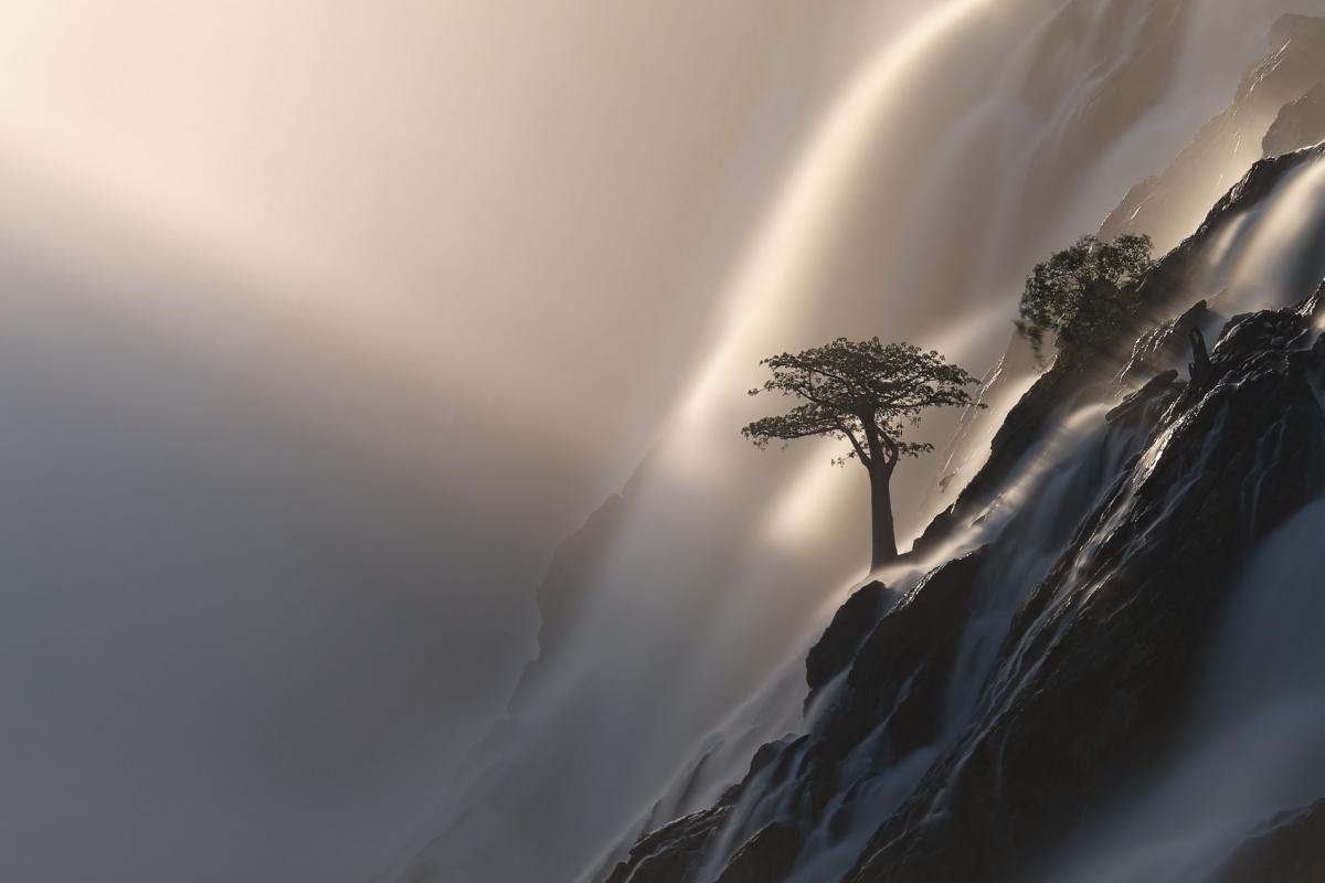 """Khoảnh khắc siêu thực được tác giả Anette Mossbacher ghi lại ở thác Ruacana, Namibia trong bức ảnh mang tên """"Cây đời""""./."""