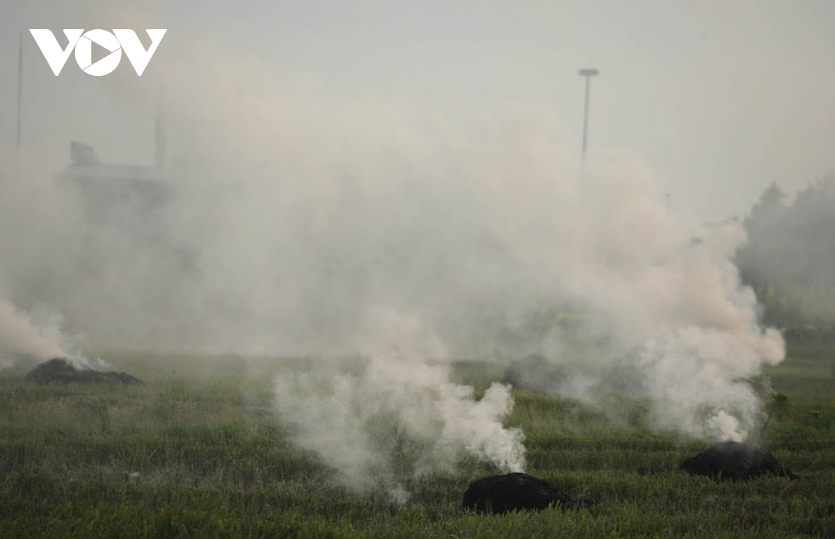 Hoạt động đốt rơm rạ vẫn còn tái diễn ở các huyện ngoại thành Hà Nội.