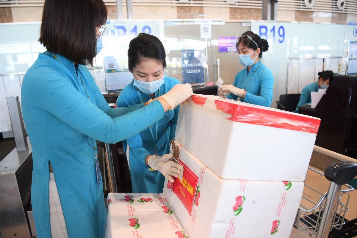 Hành lý, thiết bị y tế của đi kèm của Đội phản ứng nhanh Bệnh viên Chợ Rẫy và được phục vụ tại quầy, lối đi ưu tiên.