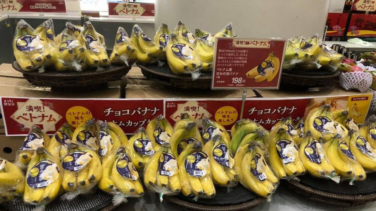 Trong Tuần hàng năm nay Aeon sẽ tiếp tục chú trọng quảng bá thêm quả chuối của Việt Nam.
