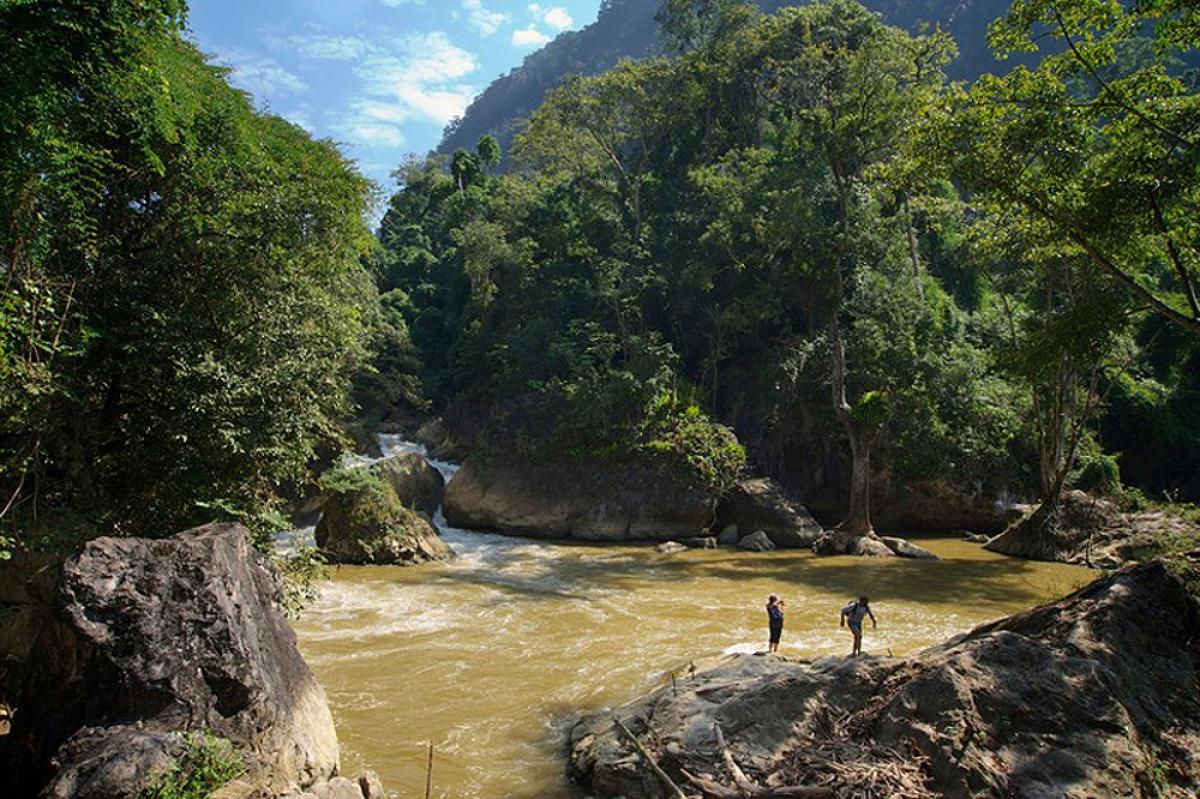 Một phần suối trong Vườn quốc gia Ba Bể (Ảnh: J Marshall - Tribaleye Images / Alamy Stock Photo)