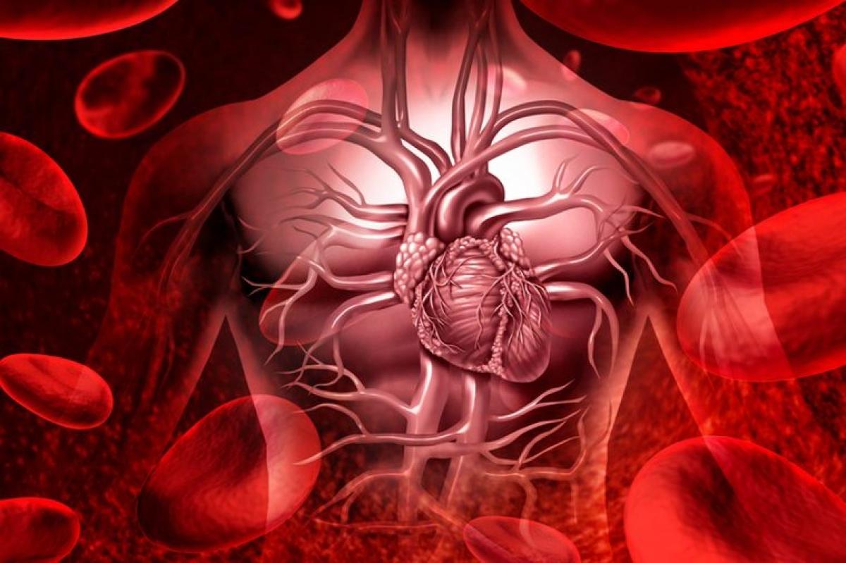 Nguy cơ mắc bệnh tim mạch: Những người thuộc nhóm máu A, B hoặc AB có nguy cơ mắc bệnh tim mạch cao hơn người thuộc nhóm máu A, đồng thời thường có tuổi thọ thấp hơn. Thống kê cho thấy khoảng 9% số ca tử vong do bệnh tim mạch có liên quan đến yếu tố nhóm máu.