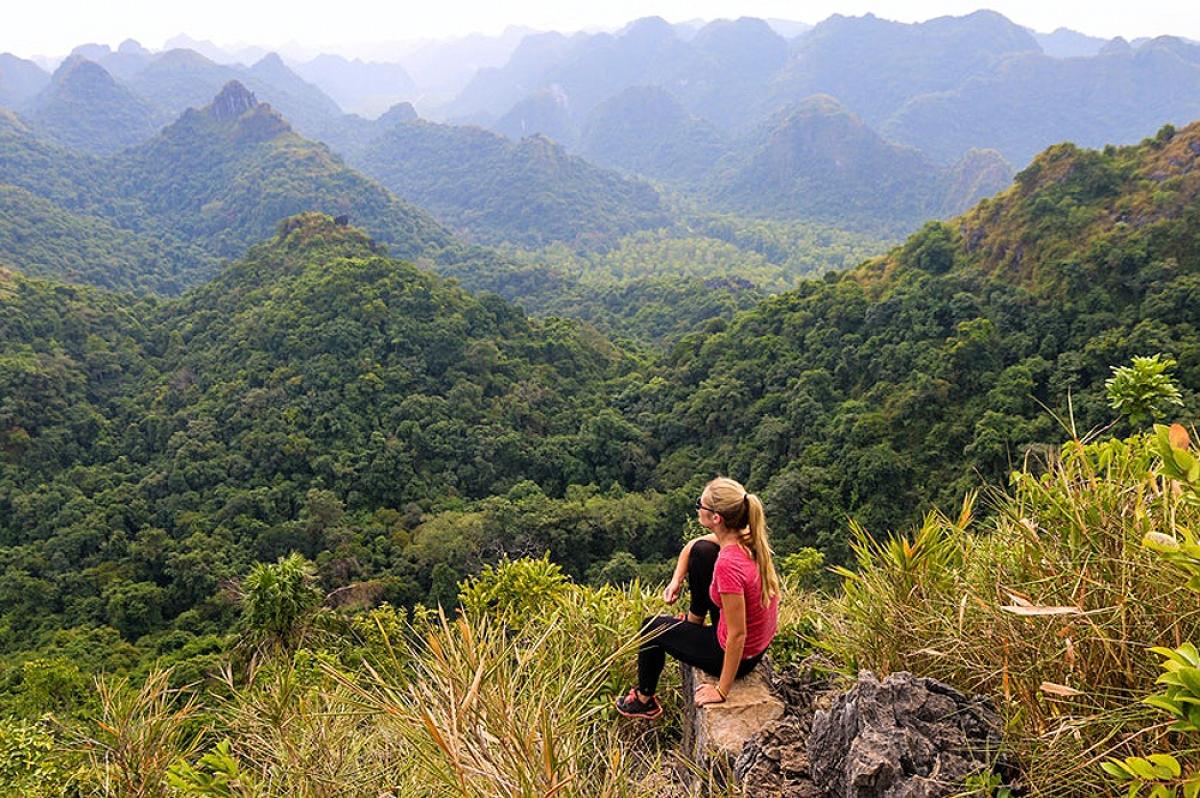 Vườn quốc gia Cát Bà sở hữu những cung đường đẹp để trekking (Ảnh: Daliusposus / Shutterstock)