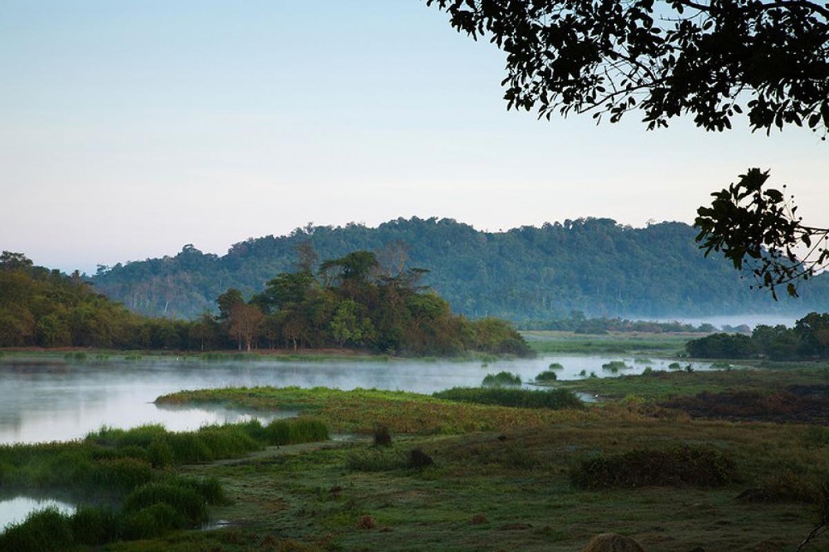 Vườn quốc gia Cát Tiên được ví như viên ngọc quý (Ảnh: Anders Blomqvist / Alamy Stock Photo)