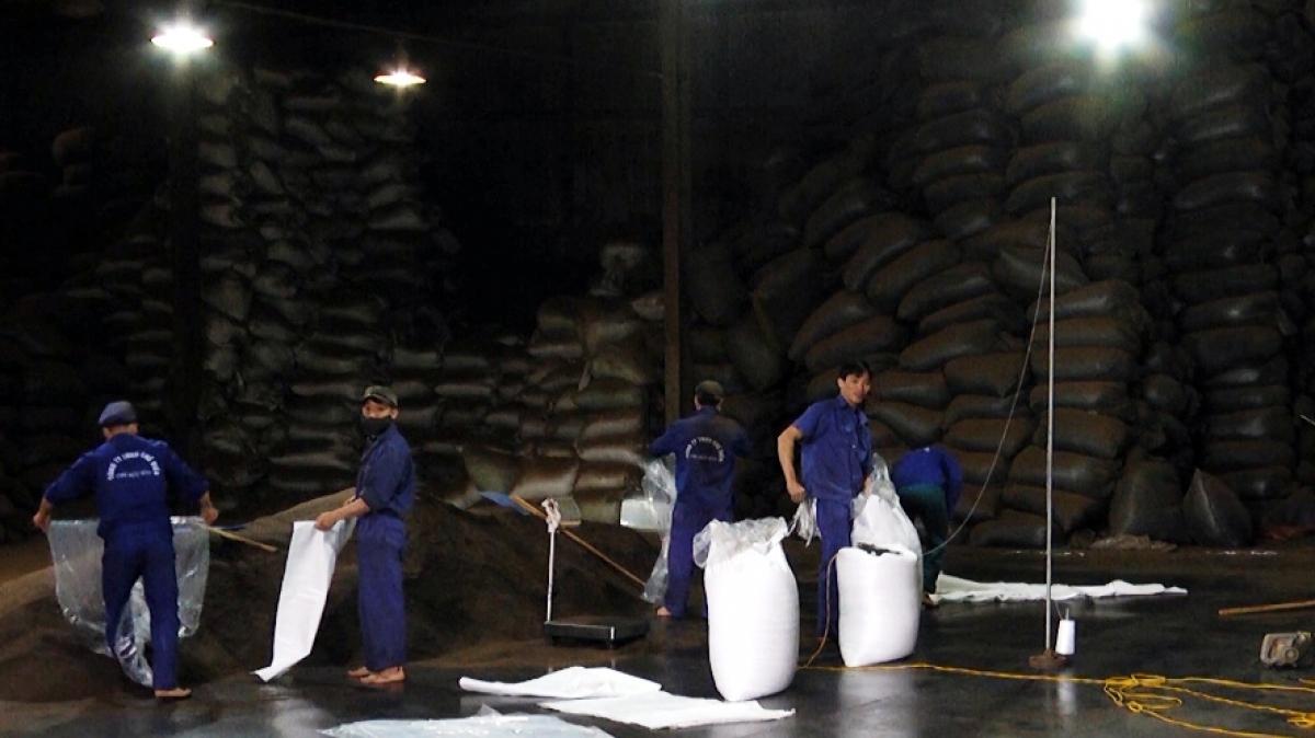 Các DN sản xuất sản phẩm nông sản ở Yên Bái vẫn nỗ lực duy trì sản xuất kinh doanh trong điều kiện khó khăn.