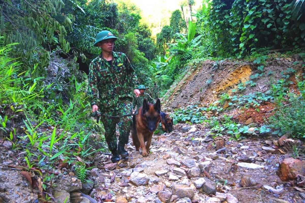 Bộ đội Biên phòng tuần tra, đảm bảo an toàn cho quá trình đánh sập hầm khai thác vàng