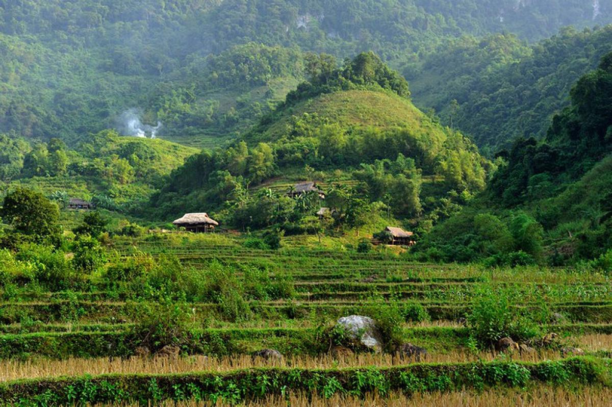 Vườn quốc gia Cúc Phương là địa điểm dễ dàng khám phá (Ảnh: Hemis / Alamy Stock Photo)