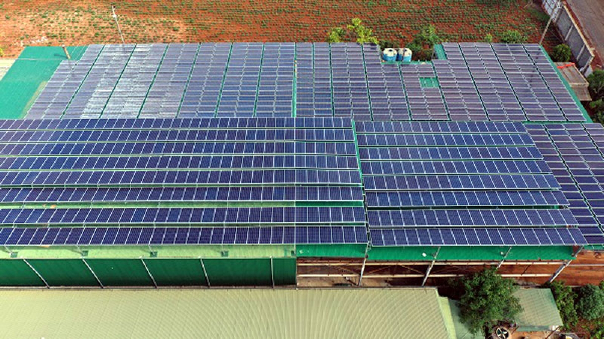 Thời gian qua, các dự án điện mặt trời phát triển ồ ạt tại nhiều địa phương.