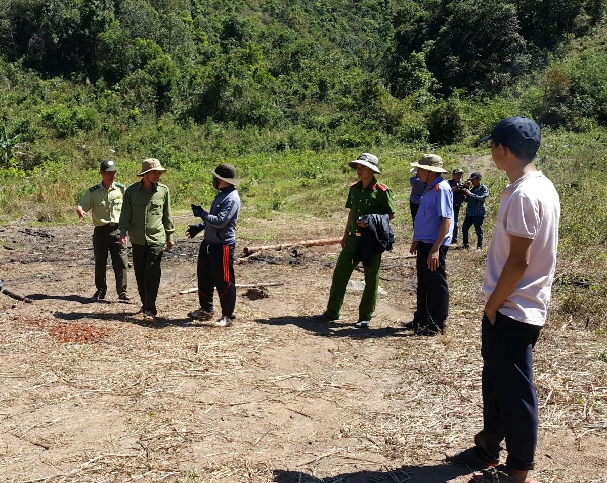 Khó nhất là giám định thiệt hại tài nguyên rừng theo từng thời điểm.