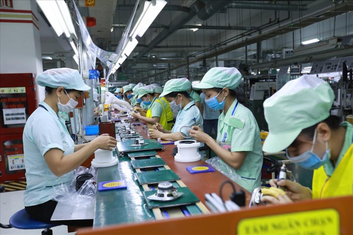 Khẩn trương thực hiện các nhiệm vụ tạo việc làm bền vững, nâng cao mức sống cho lao động