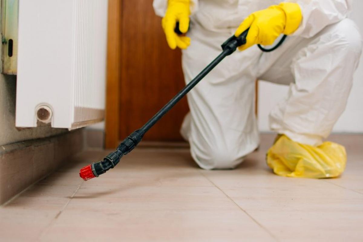 Các loại xịt côn trùng có thể gây các vấn đề về phổi nếu bạn không tuân thủ các hướng dẫn đi kèm. Khi dùng các loại thuốc diệt côn trùng dạng xịt trong phòng, hãy đảm bảo phòng thoáng khí và hãy sử dụng khẩu trang để tránh hít phải các hóa chất này.
