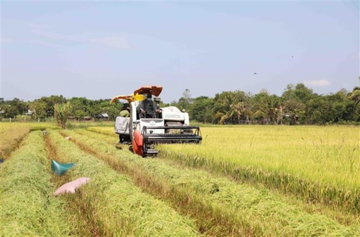 Australian businesses are keen toseek out greater opportunities in the field of agricultural technology in Vietnam