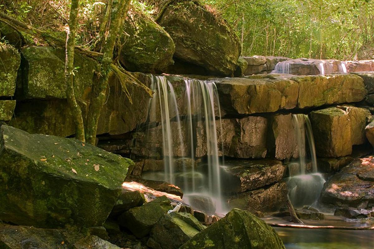 Những thác nước trong Vườn quốc gia Phú Quốc (Andreas Rose / Alamy Stock Photo)