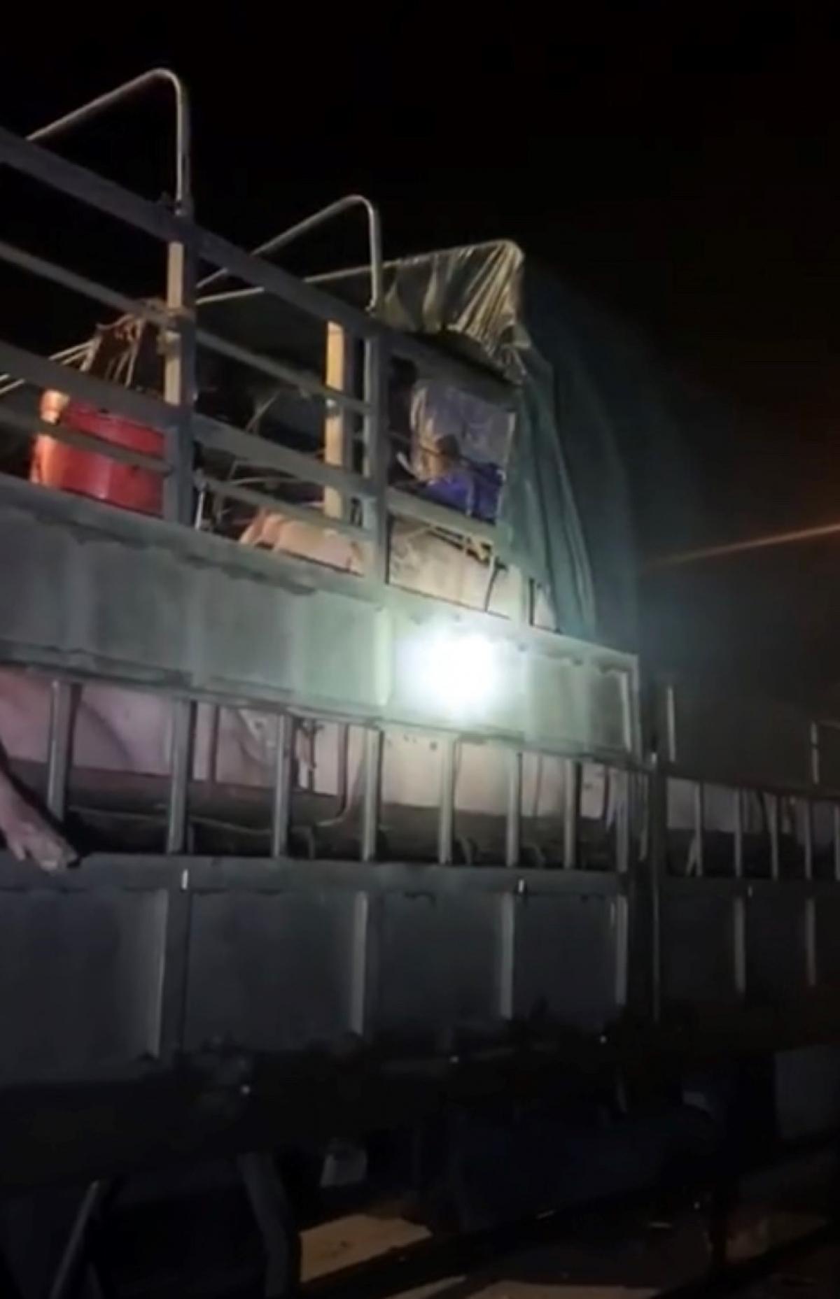 Qua kiểm tra, lực lượng chức năng phát hiện gần 20 người trốn trên 5 xe tải chở lợn.