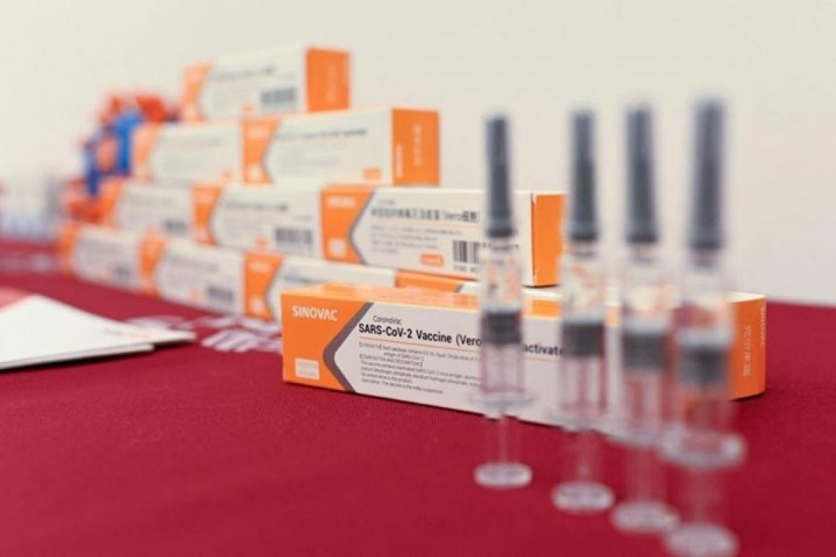 Vaccine Sinovac của Trung Quốc. Ảnh: AFP