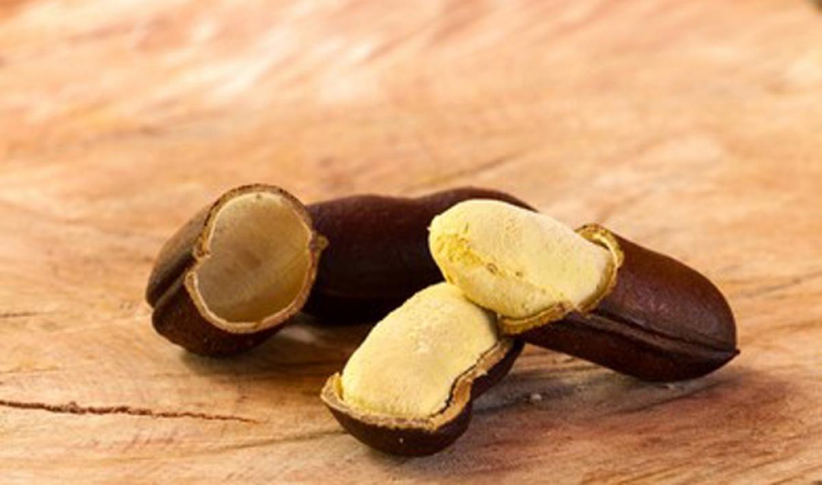 Cây Stinking Toe phải mất tới cả chục năm mới ra quả. Mỗi quả chỉ có vài hạt. Lớp vỏ của loại quả này rất dày, cứng, khi được đập bỏ, mùi hăng tương tự mùi hôi chân được tỏa ra từ phần ruột như bột bao quanh hạt. Tuy nhiên khi ăn lại có hương vị ngọt ngào như sữa.