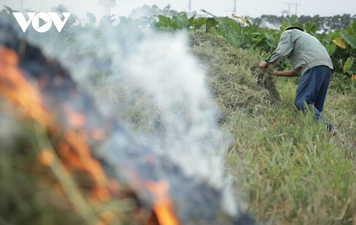 Đốt rơm rạ phát sinh ra CO2 và PM2.5 khiến chất lượng không khí ở Hà Nội xuống thấp.