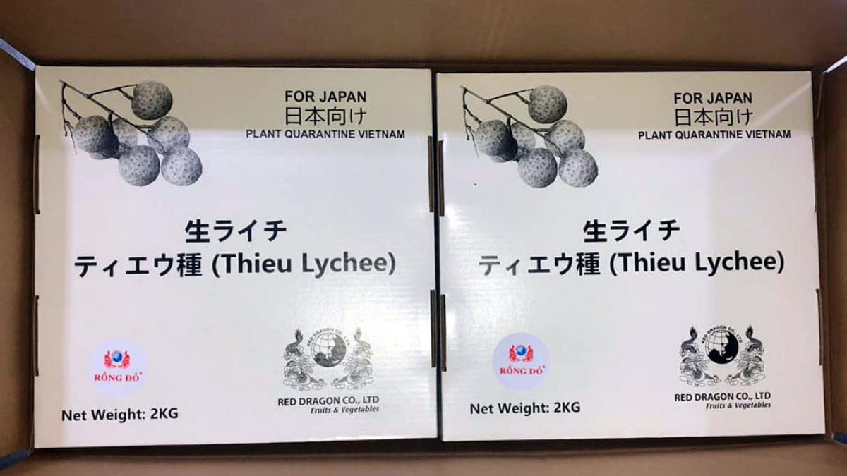 Bao bì vải thiều Việt Nam xuất khẩu vào Nhật Bản đã được cải tiến với nhiều thông tin bổ ích.