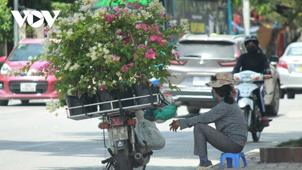 A street vendor patiently waits for customers at midday.